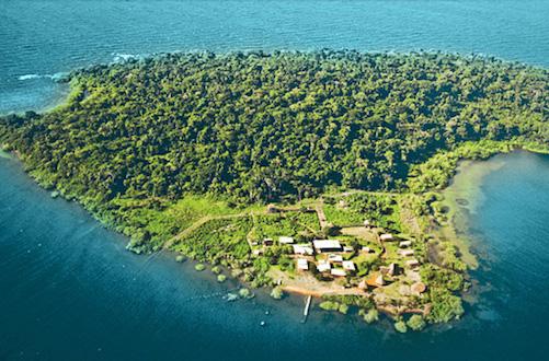 who_island
