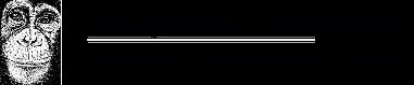 https://ngambaisland.org/wp-content/uploads/2016/03/chimp_logo.png