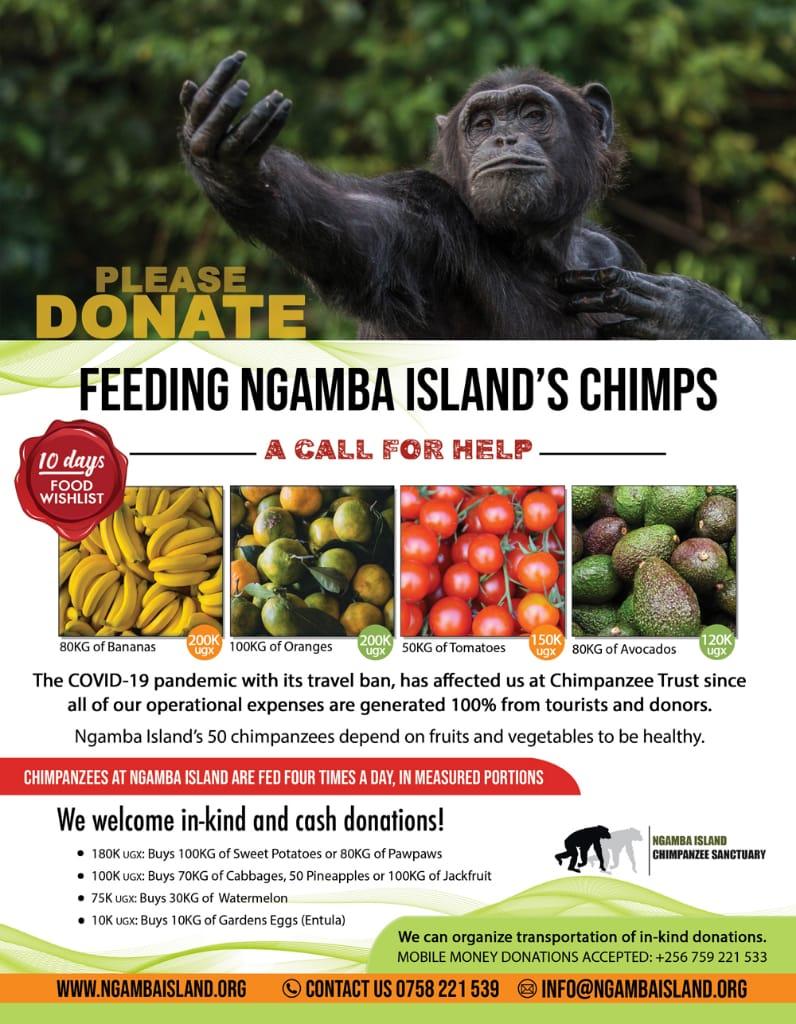 donation to ngamba island